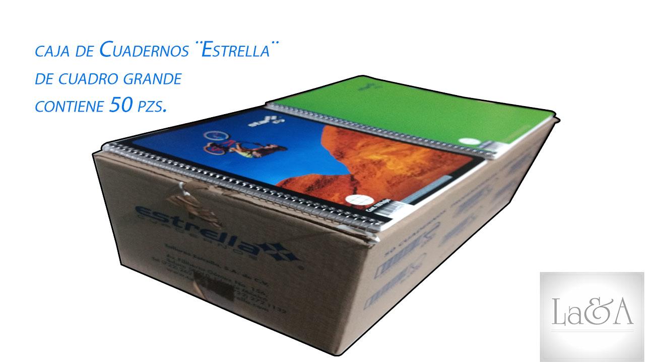 Caja Cuadernos Cuadro Grande ¨Estrella¨